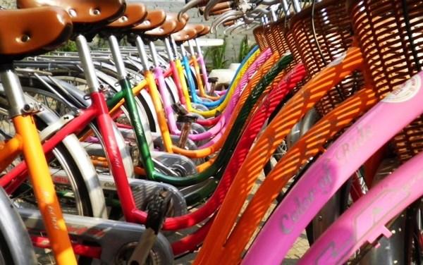 """อยากเที่ยวแบบปั่นจักรยาน บอกร้าน """"N&K Bicycle For Rent"""""""