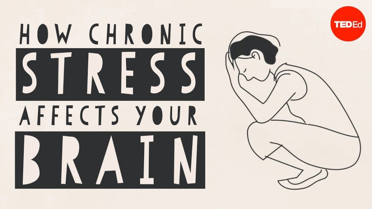 Chronic Stress Affects Brain