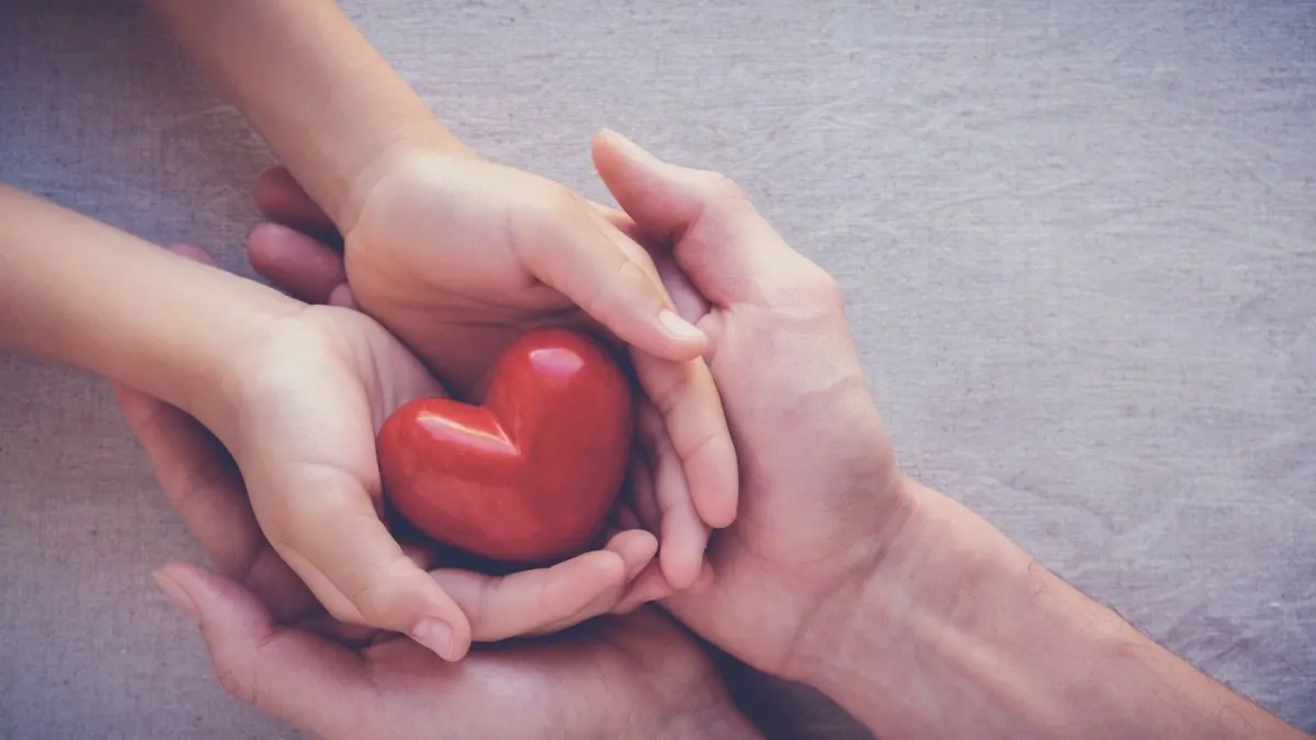 A child and an adult hold a heart in their hands.