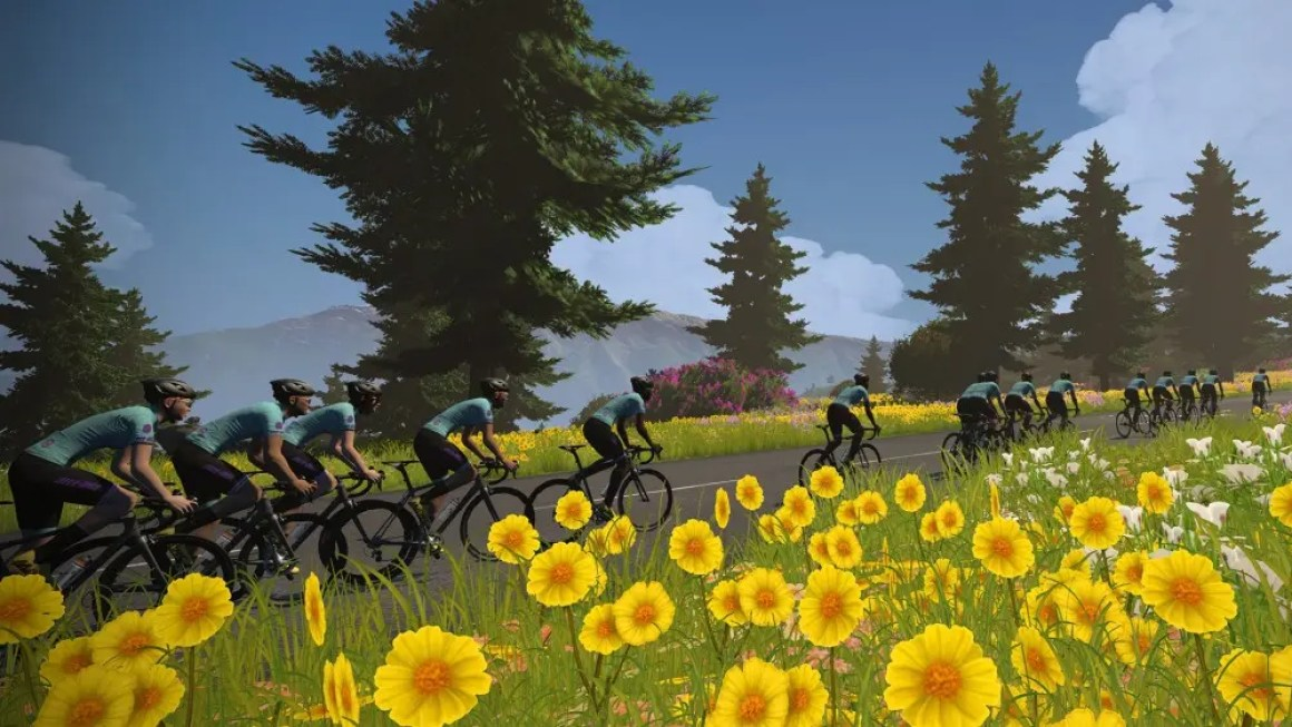 Скриншот из Виртуального Тур де Франс на Цвифте