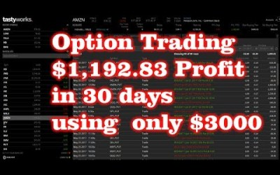 $1,192.83 in 30 days Option Trading – Using $3000