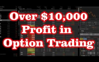 Over $10,000 Profit in Option Trading