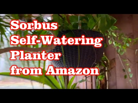 Sorbus Hanging Planter Round Self-Watering Wicker Basket from Amazon Review