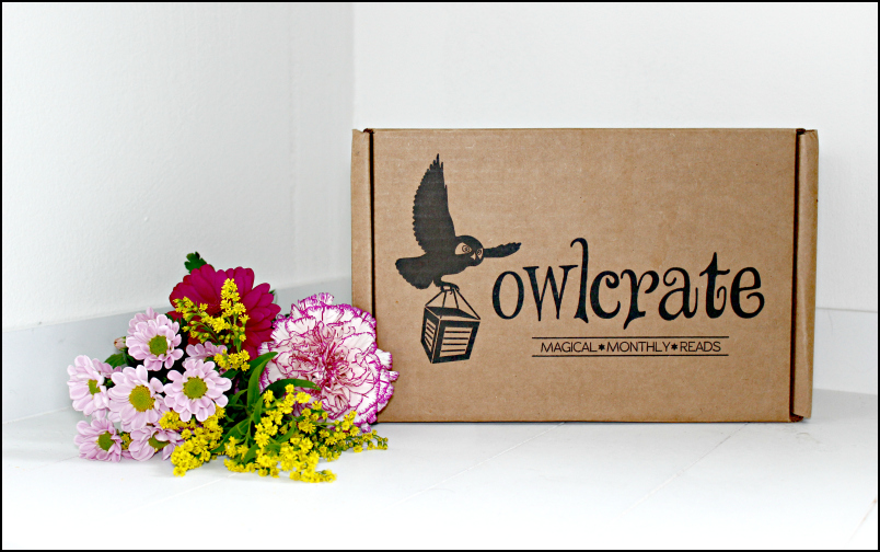 Owlcrate - rand