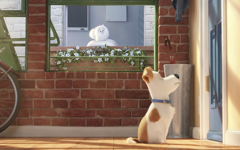 The Secret Life of Pets still
