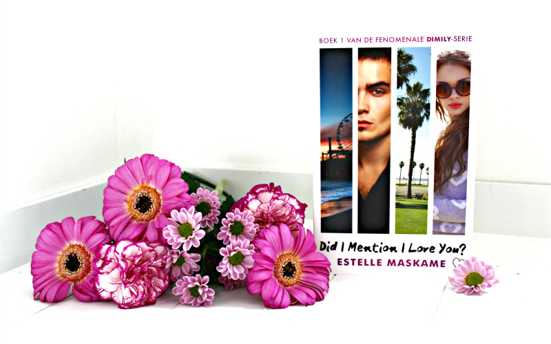Boekrecensie | Did I Mention I Love You? – Estelle Maskame