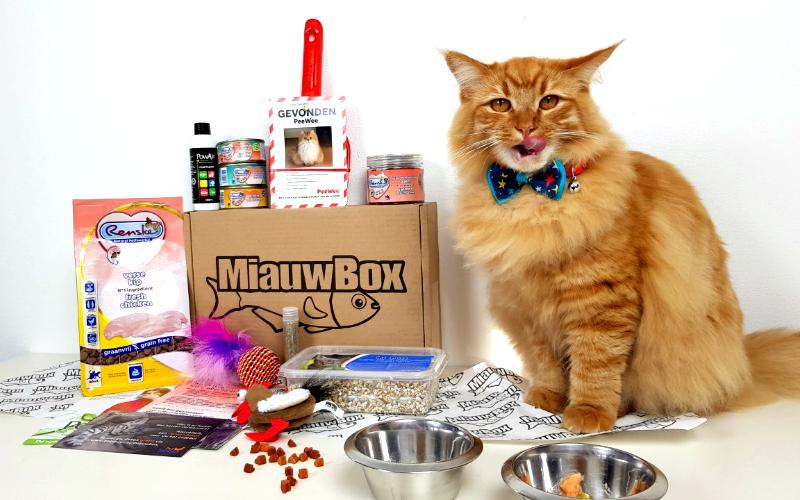 Miauwbox