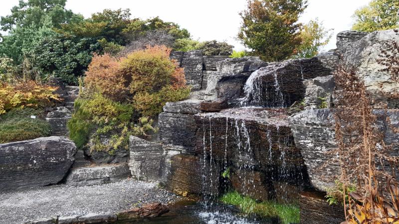 Botanical Garden Norway
