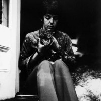 Paul McCartney and a Kitten