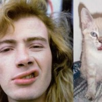Dave Mustaine and a Cat