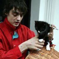 Pete Doherty With a Cat