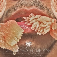 Toro Y Moi: Underneath the Pine Review (Four Takes)