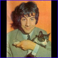Cat Stevens With A Cat