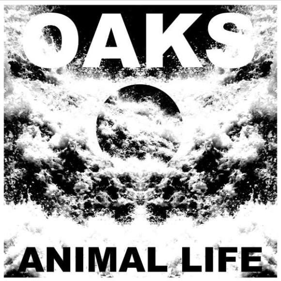 oaks-animal-life