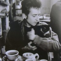 Music Legends With Cats: Bob Dylan IV