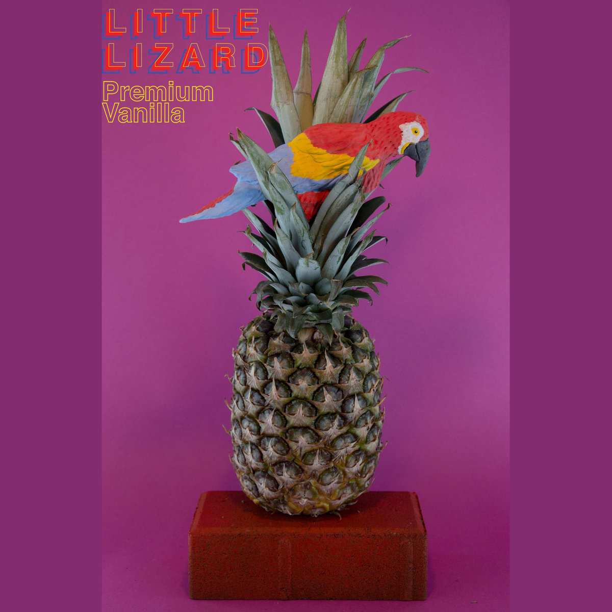 Introducing: The Tropical Funk Instrumentals of Little Lizard (LP Release Show Sunday!)
