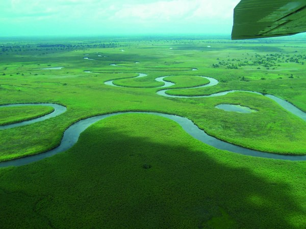 The Okavango River. Image by
