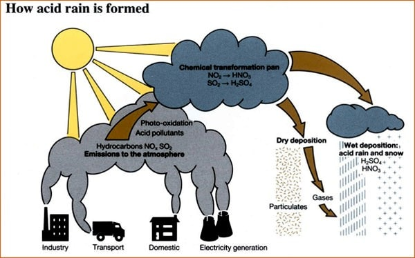 How Acid Rain is formed. Image by Wikispaces.