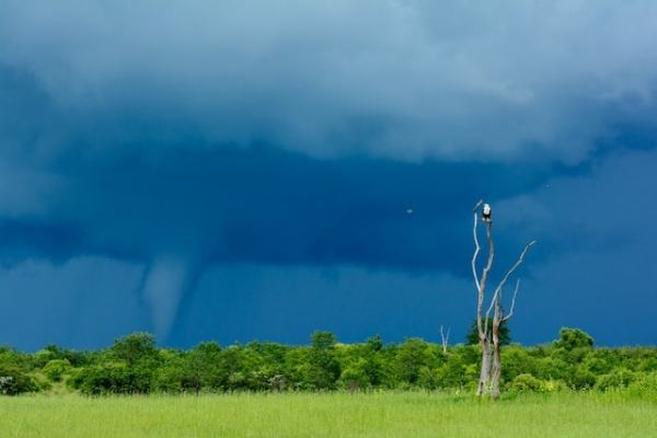 "Mini ""Tornado"" over Lake Victoria. Image by National Geographic."