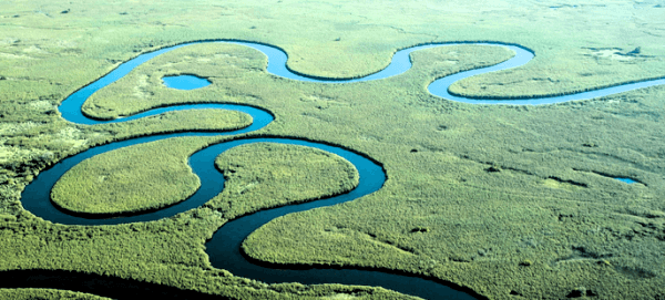 Meandering river. Image credit wordpress.com