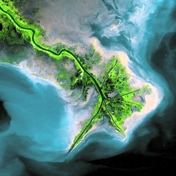 Satellite view of the Mississippi River. Image credit
