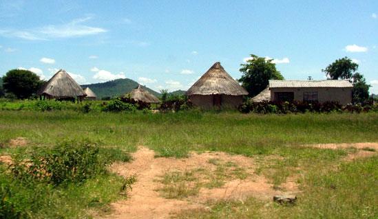 A typical rural compound. Image credit techzim.co.zw