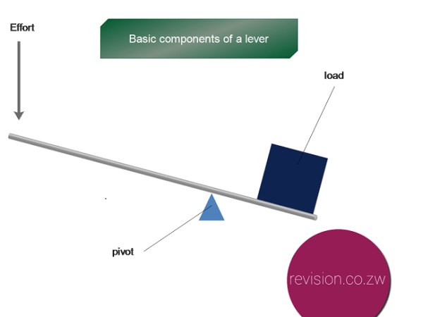 Components of a lever