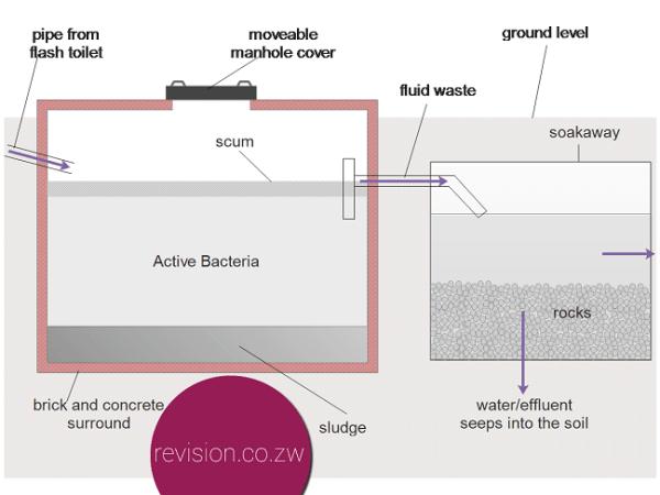 A septic tank