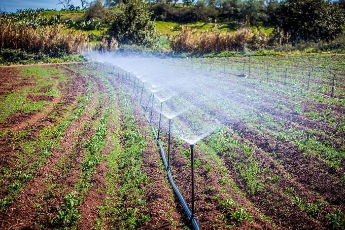 Home Sprinkler System Brands
