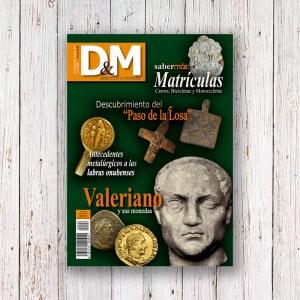 Revista DM 26