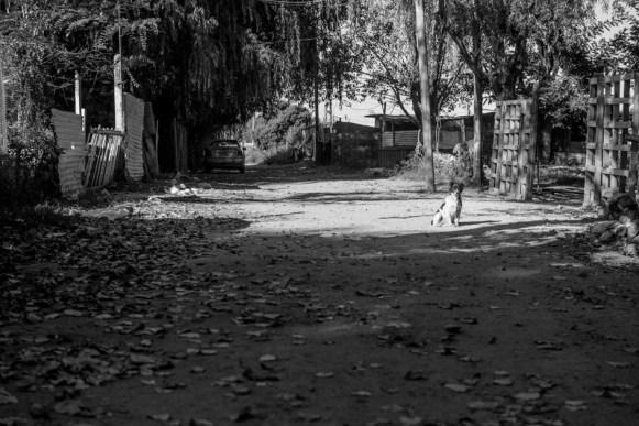 """Luego de muchas gestiones, se logró que el Municipio haga el engranzado de una de las calles de la villa, donde era imposible el tránsito de los vecinos. Ese fue el lugar en donde empezó el programa de radio """"El pueblo se hace escuchar""""."""