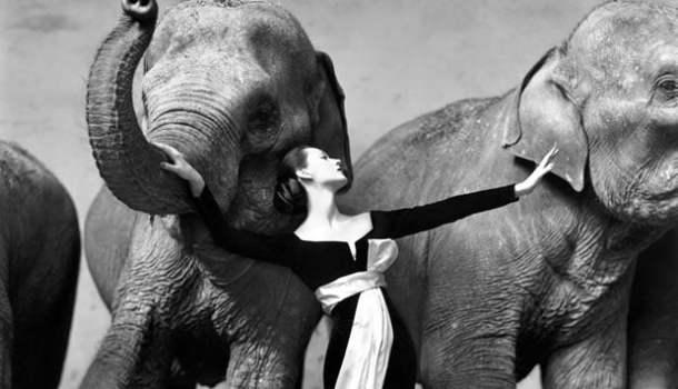3 mil fotografias de sete dos maiores fotógrafos da história