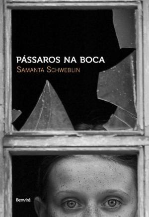 Pássaros Na Boca (2008), Samanta Schweblin