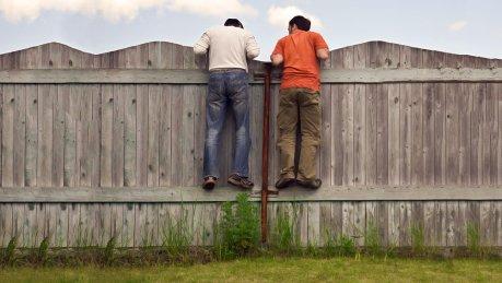 Viver em cima do muro é prejudicial à saúde