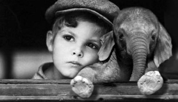 22 certezas da infância