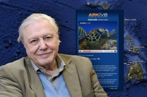 sir-david-attenborough-patrocinador-de-wildscreen