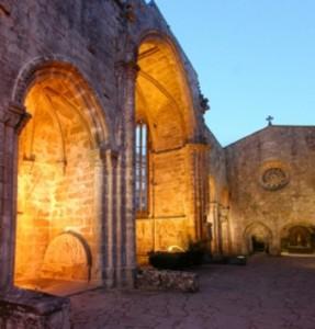 Museo Pontevedra, Ruínas de San Domingos