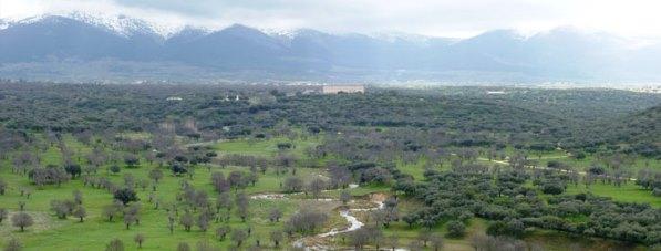 Bosque de Riofrío Patrimonio Nacional
