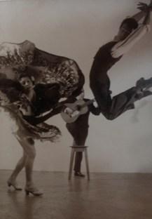 patrimonio-flamenco-1