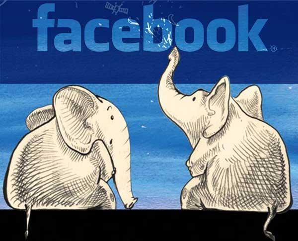 2 Elefanţi