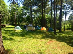 Camping Copacabana, Eldorado, Misiones: ideal para contingentes y grupos