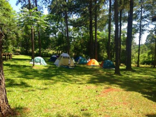 camping2028_21