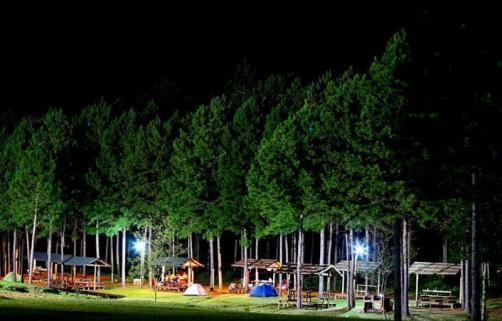 camping2028_22