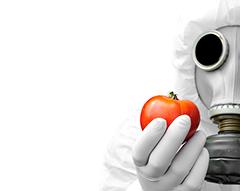 O Veneno Está na Mesa 2 dá continuidade à reflexão sobre o perigo que o uso de agrotóxicos representa para a saúde<br>Foto: iStock