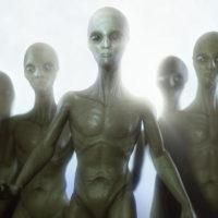 alien-head-642083