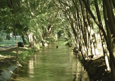 Canal Cordero atraviesa la finca. Un curso de agua de uso comunal, de los que fueron construidos a principios del siglo pasado por el ingeniero Cipolleti.