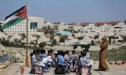 29 de Noviembre: Día Internacional de solidaridad con el Pueblo Palestino.