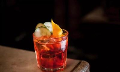 Dicas de Drinks: gin é o novo queridinho das coqueteleiras