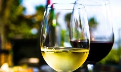 5 dicas para se refrescar com vinho no calor