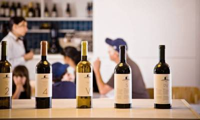 6 razões para visitar as vinícolas do Alentejo